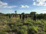 Bushmen Expedition